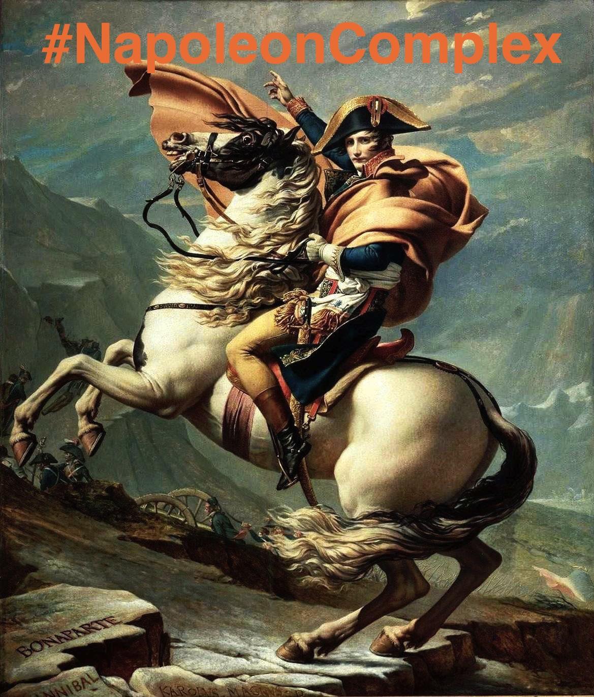 hero villain the trouble napoleon stephen gerald weber