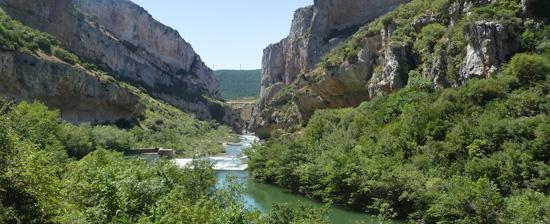 The Irati River